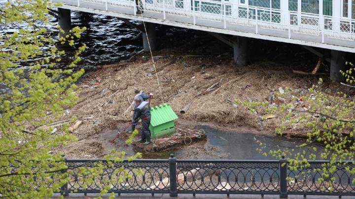 На маленьком плоту: как в Ярославле убирали смытый в Волгу мусор