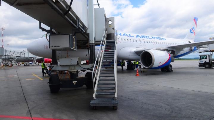 Из-за коронавируса в «Уральских авиалиниях» собралась огромная очередь на возврат билетов