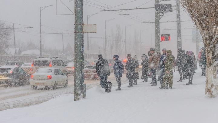 Зима не отступает: на Самарскую область надвигается метель и сильный ветер