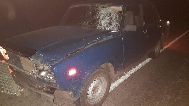 В Курганской области в деревне насмерть сбили пешехода