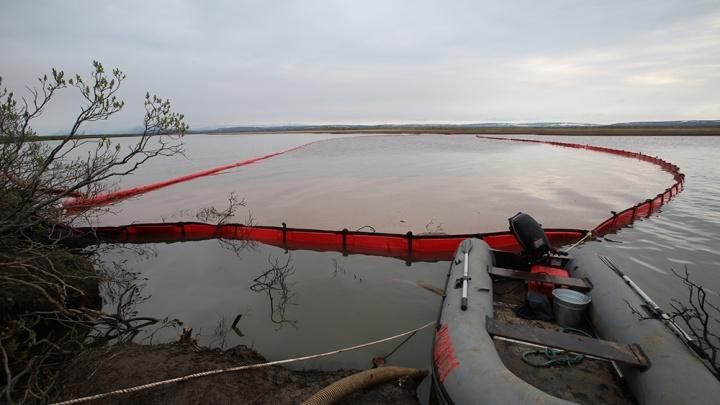 «Это уникальная биологическая трагедия»: хронология экологической катастрофы в Норильске, оценка эколога