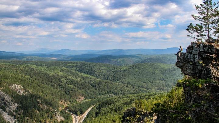 Башкирия потратит 211 миллионов рублей на восстановление лесов