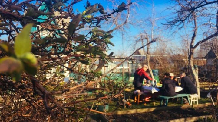 Двое умерших, застрявшие в Якутии вахтовики и переезды в сады. Как Челябинск провёл коронавирусный Первомай