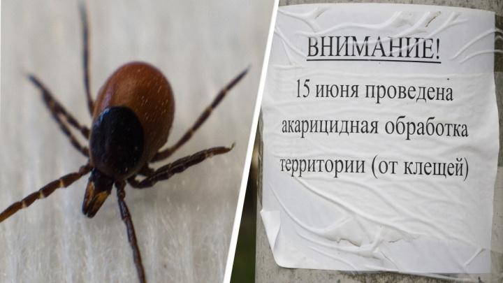 В Роспотребнадзоре рассказали, жители каких районов Архангельской области страдают от укусов клещей