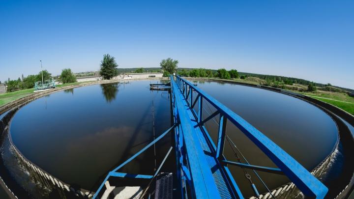 И Волга чище, и отходов меньше: ТОАЗ взял на себя миссию сохранить природу города