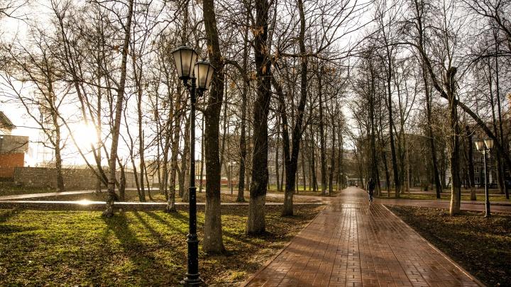Лежал под арт-объектом: в Бутусовском парке в Ярославле нашли мертвого мужчину
