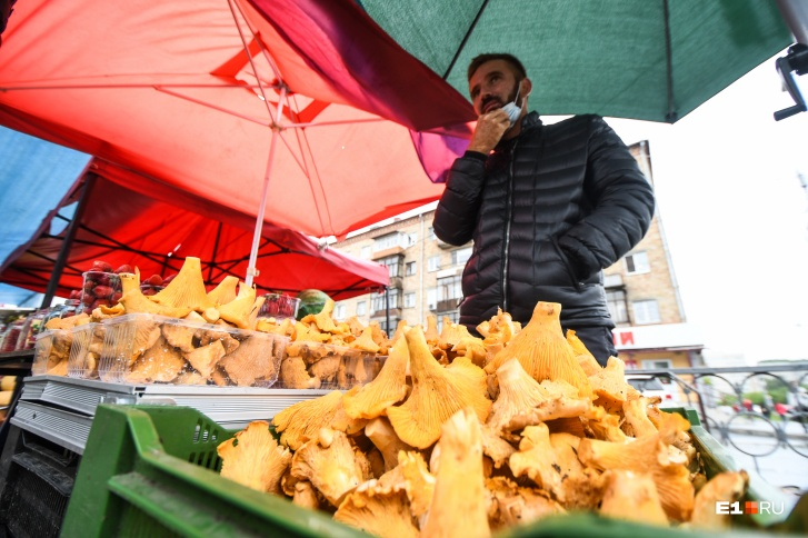 Средняя стоимость килограмма грибов на рынке на ВИЗе — 250 рублей
