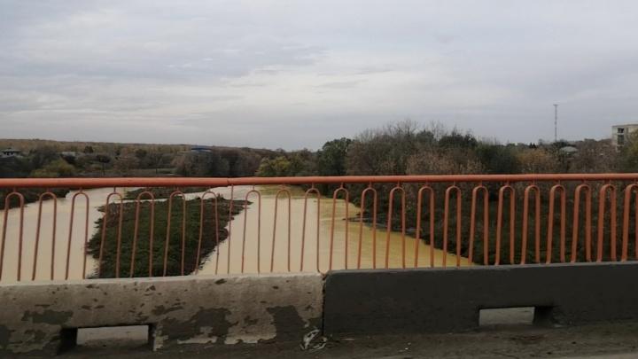«Листья пожелтели, река — тоже»: в Челябинской области резко помутнела река Миасс