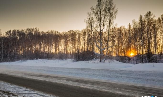 В Новосибирской области на трассе под колёсами «Москвича» погиб пешеход