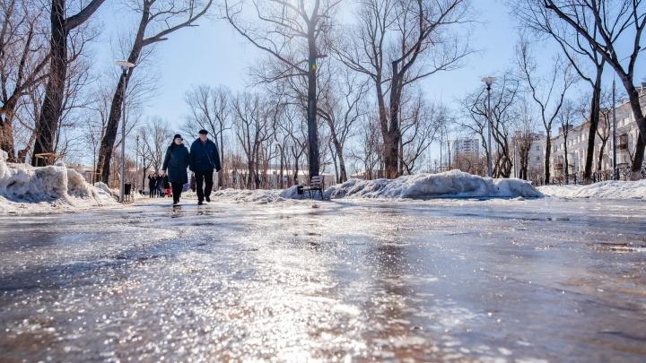 В Прикамье ожидается аномальное потепление до +10 градусов и дожди