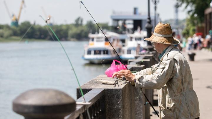 Куда поехать на рыбалку в Ростове: карта мест, где улов обеспечен