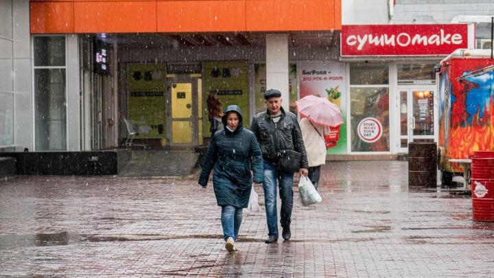 Первый снег выпал в Новосибирске — мы поймали его на фото