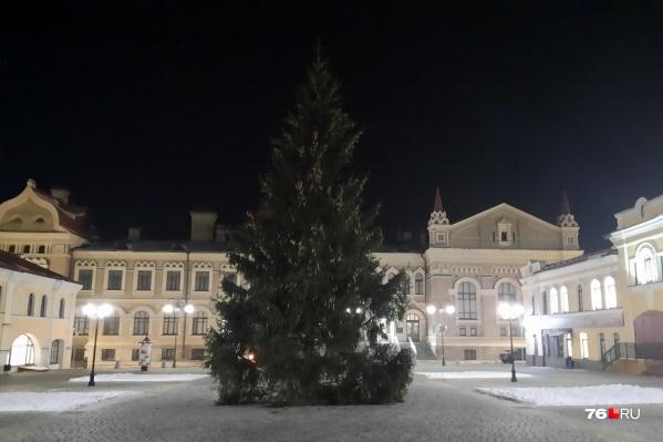 Спиленную в микрорайоне Кировский елку поставили на Красной площади