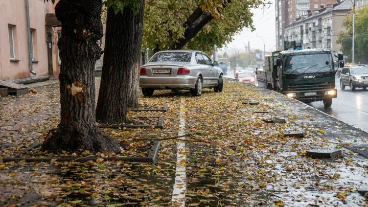 Власти назвали сумму, потраченную на странную велодорожку на Владимировской