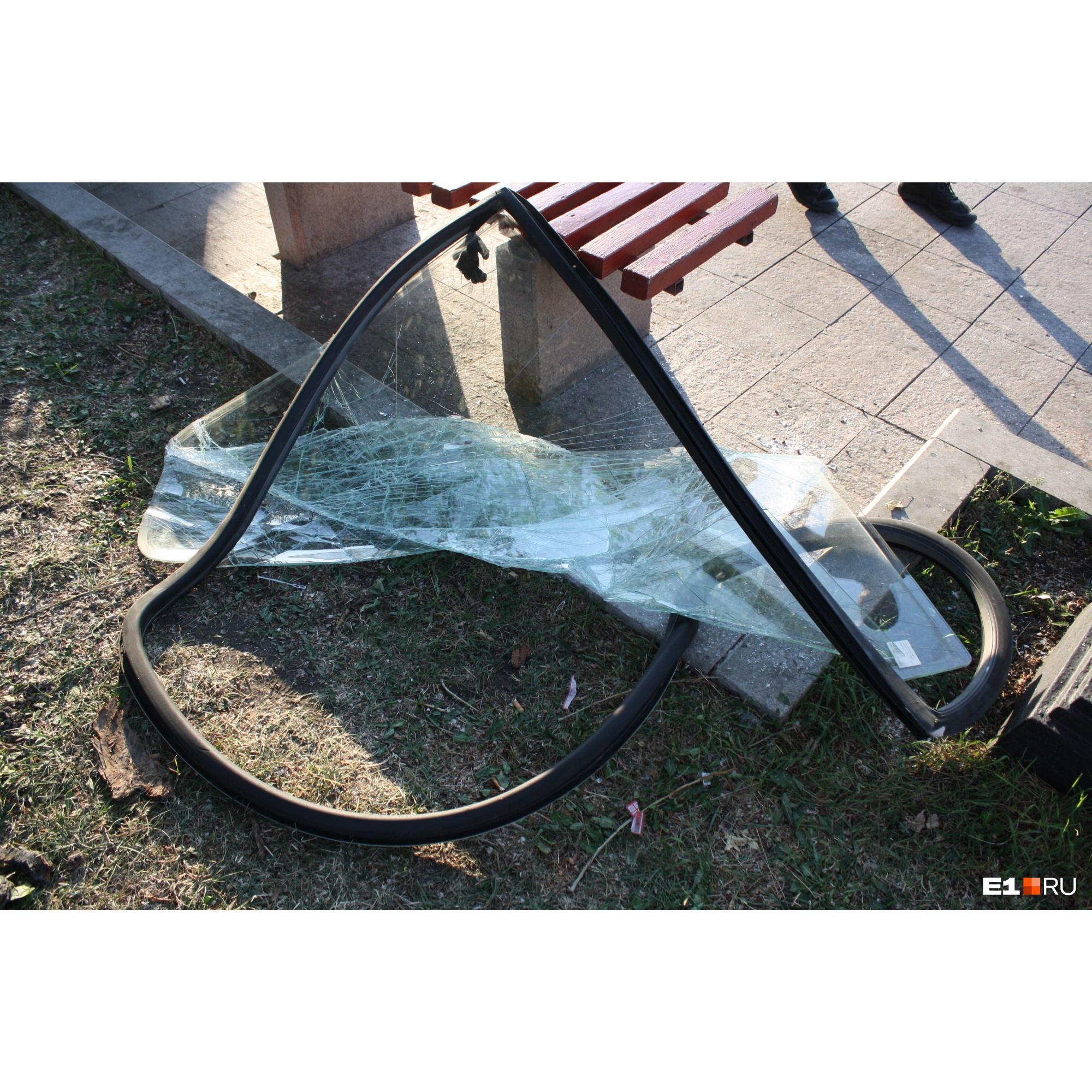 Лобовое стекло автобуса возле скамейки. Очевидцы говорили, что после удара в дерево водителя выбросило из кабины. В Гортрансе это опровергли