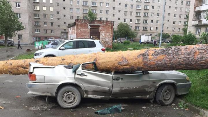 Вести с полей: считаем, сколько людей, машин и домов пострадало в Свердловской области из-за урагана