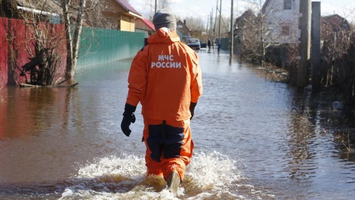 Дважды в одну реку: смотрим, как опять на острове Краснофлотском дачники страдают от затопления