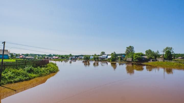 Большая вода: пик половодья в Прикамье ожидается на этой неделе