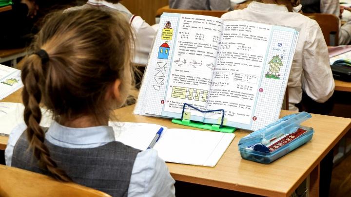 «Это не дистант»: Злобин развеял страхи родителей перед проектом «Цифровой образовательной среды»