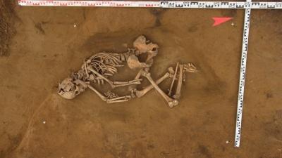 У Николаевского моста археологи нашли средневековый скелет и останки древних оленей