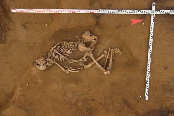 Скелет человека относится к эпохе раннего средневековья