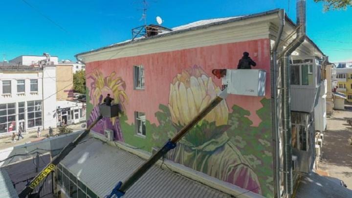 Самарцев просят выбрать название цветочному стрит-арту на Ленинградской