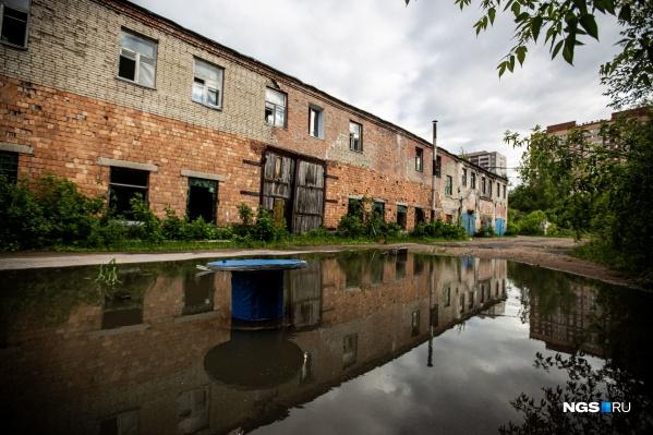 Всего на заброшенной территории, когда-то принадлежавшей новосибирскому заводу, около 30 построек — сейчас их облюбовали подростки и бездомные собаки