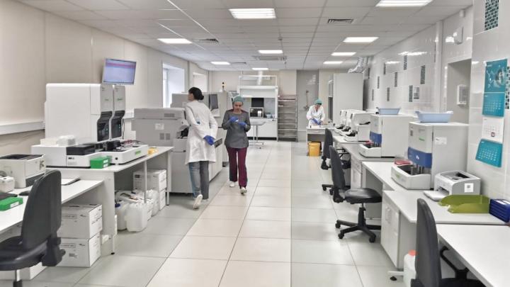 В Красноярске начали тестирование на антитела к коронавирусу
