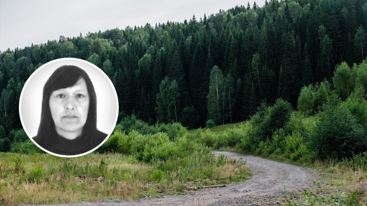 «Смогла выстоять и дождаться помощи»: в Прикамье волонтеры нашли пропавшую в лесу 57-летнюю женщину