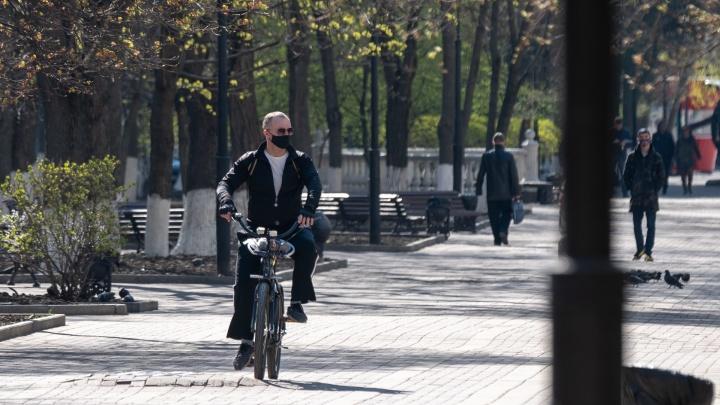 Коронавирус в Ростове: итоги дня, 14 апреля
