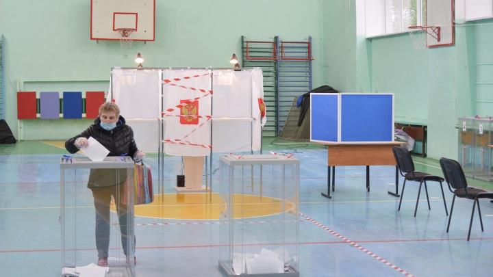 Как найти свой избирательный участок на выборах в Архангельской области