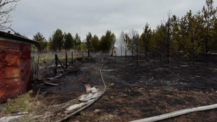 Горели трава и заброшенные дачи: в Зауралье произошел крупный ландшафтный пожар
