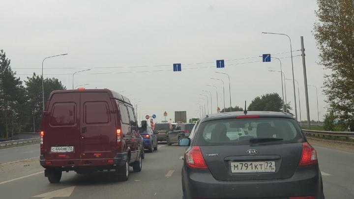 Пробки вырастут: на Московском тракте закрывают еще одну полосу