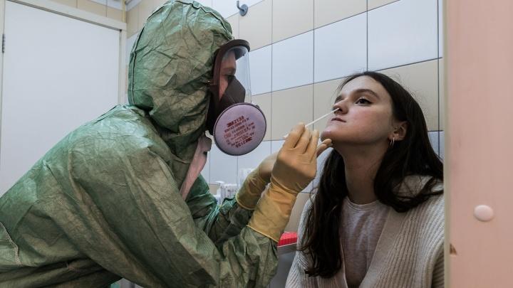Журналист НГС сдала анализ на коронавирус — как это было (пришлось потерпеть)