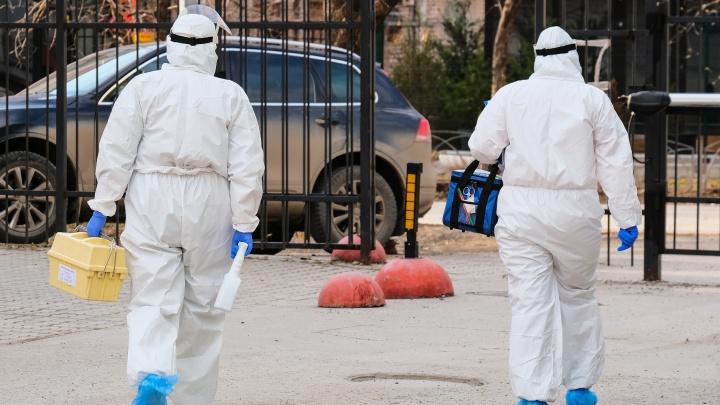 Ситуация с коронавирусом на 26 апреля: в крае +61 новый заболевший, власти разрешили продавать саженцы