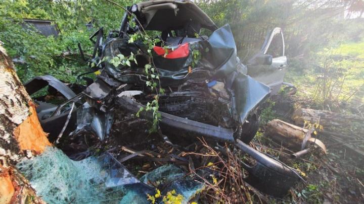 Слетел с трассы и врезался в дерево: в страшном ДТП в Ярославской области погибли два человека