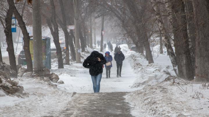 Достаем шапки: в Самарской области снова выпадет снег