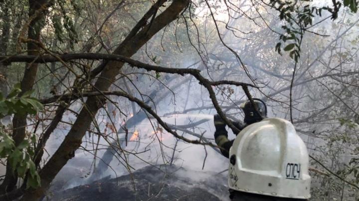 Крупный ландшафтный пожар в Каменском районе потушили