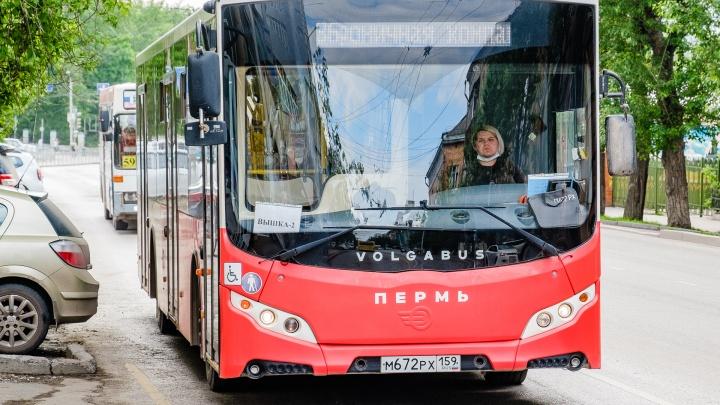 В Перми на две недели изменится движение четырех автобусных маршрутов