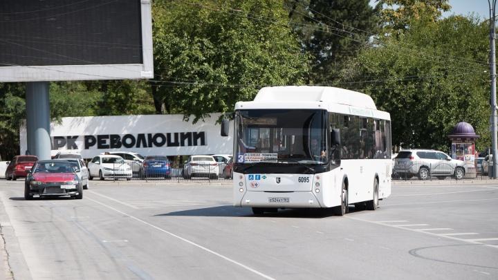 В День города в Ростове запустили «бесплатные» автобусные экскурсии. Но заплатить за проезд придется