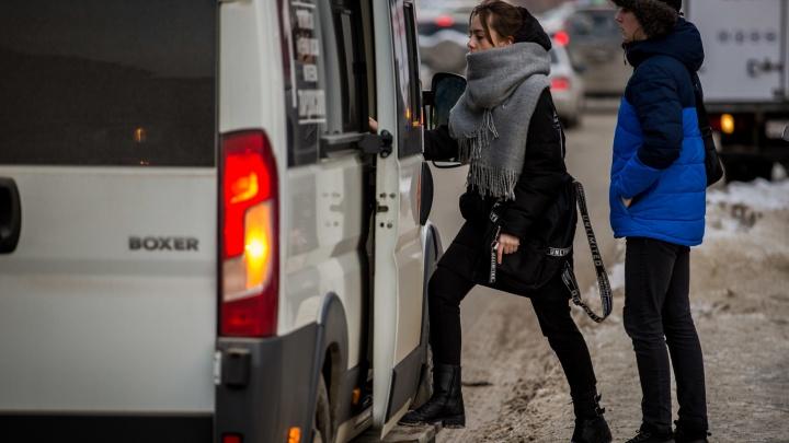 В новосибирских маршрутках с подскочившей стоимостью проезда вводят карты со скидкой