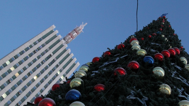 На главной площади Архангельска установят новую новогоднюю елку