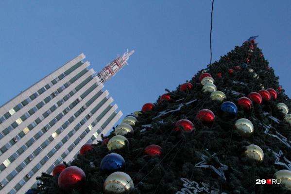 По традиции, главная ель Архангельска устанавливается возле высотки и администрации города