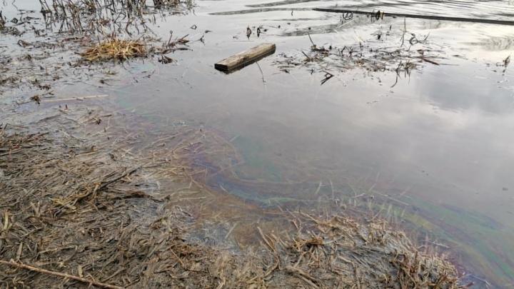 «Блеск виден из окна»: Минэкологии проверит жалобу челябинца на загрязнение Миасса нефтепродуктами