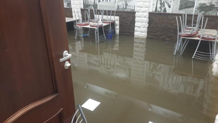 «Черпайте своими силами»: в Волгограде столовая захлебнулась в нечистотах «Концессий водоснабжения»
