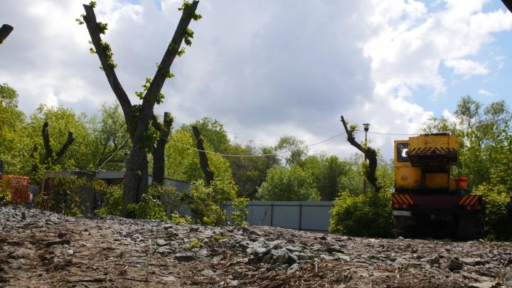 В челябинском сквере вырубают деревья под кафе. Рассказываем, при чём тут директор «ЧелябГЭТ»