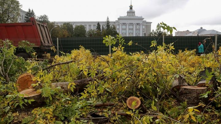 В мэрии Уфы прокомментировали вырубку деревьев на Советской площади