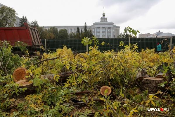 Под бульдозером оказалась и вековая липа, и ясени