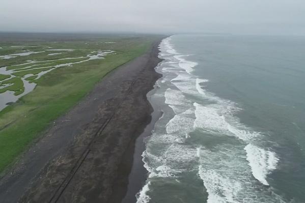 Было обследовано 800 км береговой линии