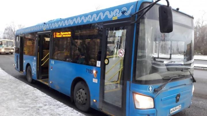 Автобусы № 5, 75б и 75м в Архангельске изменили схему движения с 14 мая